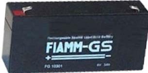 FIAMM FG10301 6 V 3.0 Ah lood non spillable accu AGM VRLA met VdS