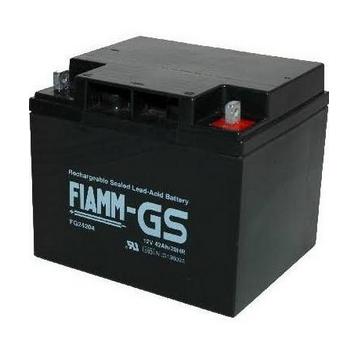 FIAMM FG24204 12V 42 Ah loodaccu/loodaccu/AGM lood non spillable VdS