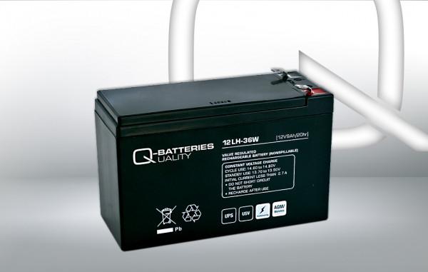 Vervangingsbatterij voor Best Power Patriot Pro 400VA UPS-systeem