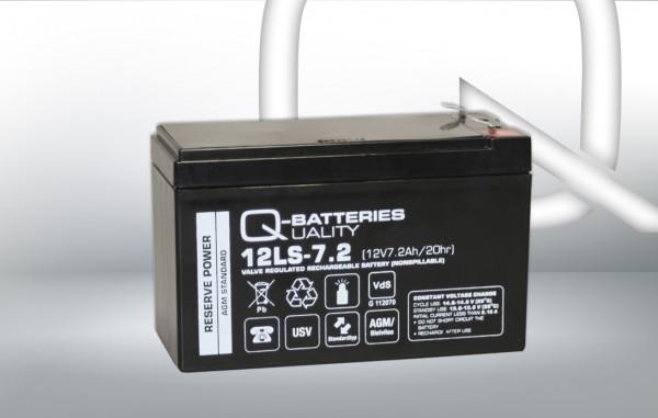 Vervangingsbatterij voor Beste Power Patriot SPS 450VA/brandbatterij met VdS