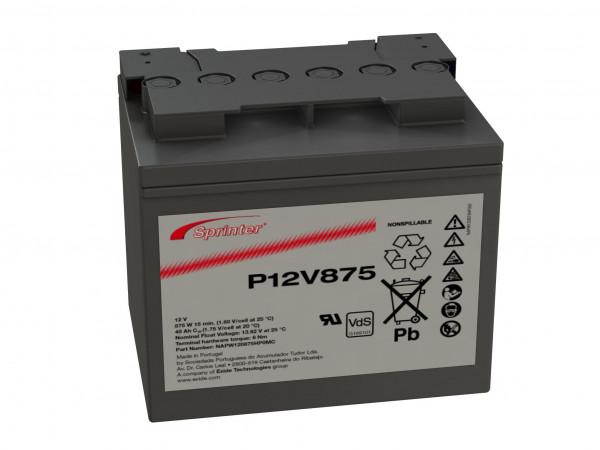 Exide Sprinter P12V875 12V 41 Ah lood AGM accu met VdS