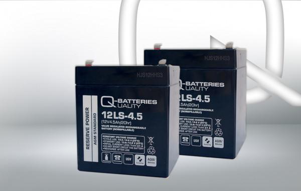 Vervangingsbatterij voor Best Power Fortress I LI 360VA UPS-systeem