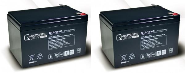 Vervangingsbatterij voor APC Smart-UPS SU1000RMINET RBC6 RBC 6/brandbatterij met VdS